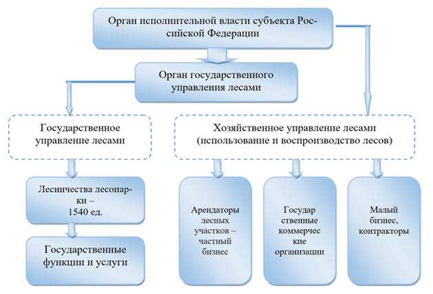 Структура управления лесами–уровень субъектов РФ