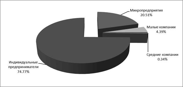 Структура малых и средних предприятий в 2009 году в Российской Федерации